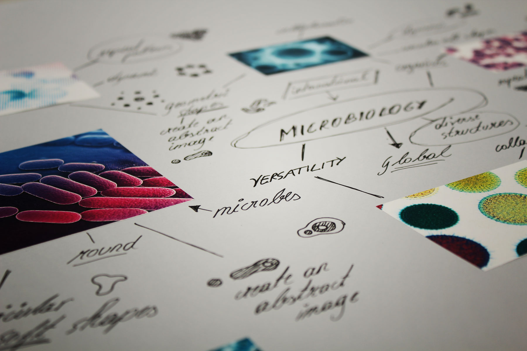 Going back to the essence of Microbiology in order to deliver a fresh and coherent brand identity.