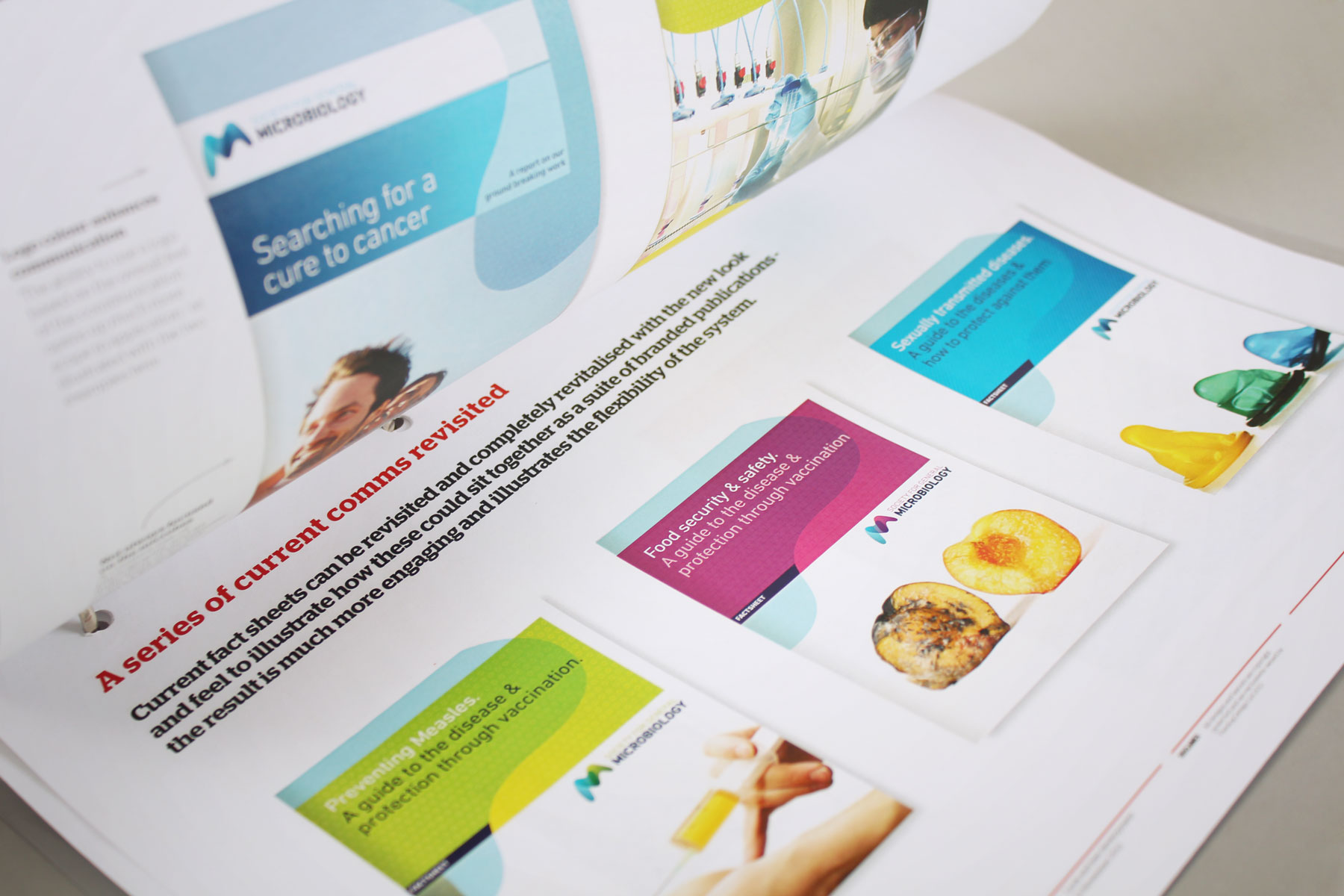 We developed a distinctive look and feel for a plethora of brand applications.